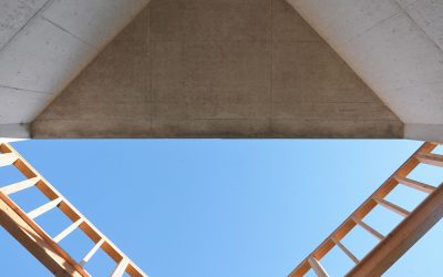 Collective-LOK's Roche/Dinkleloo Double contrasts vernacular with the institutional