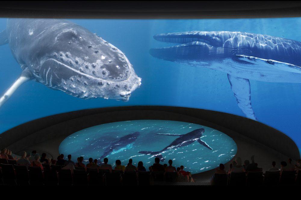 5_Honda Pacific Visions Theater_Whales_CourtesyofAquariumofthePacific