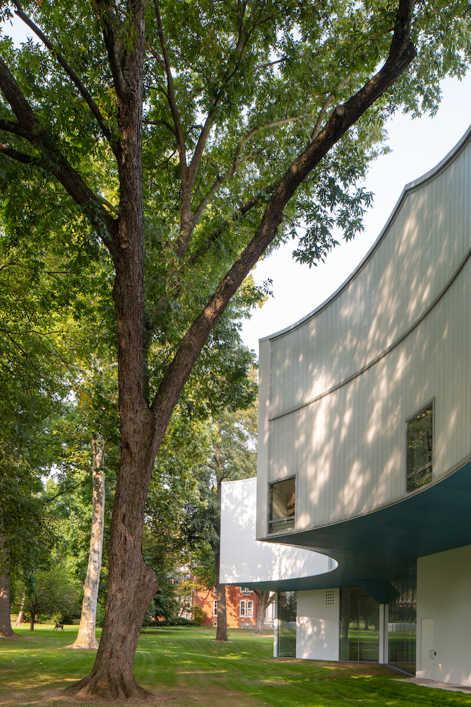 Old-Growth Trees and Driplines Create the Visual Arts Building_s Scalloped Massing, Photography by Paul Warchol