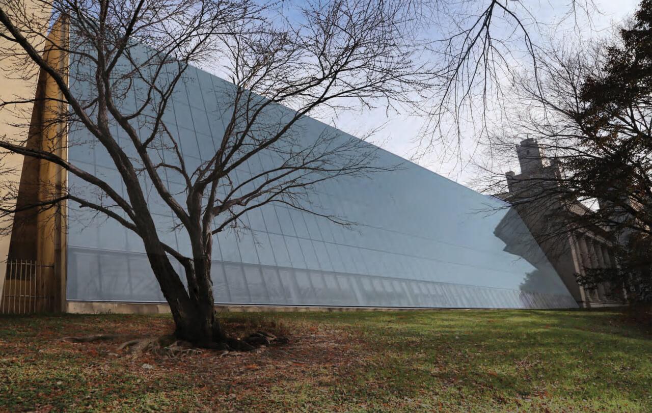 Rendering of the Metropolitan Museum of Art window wall