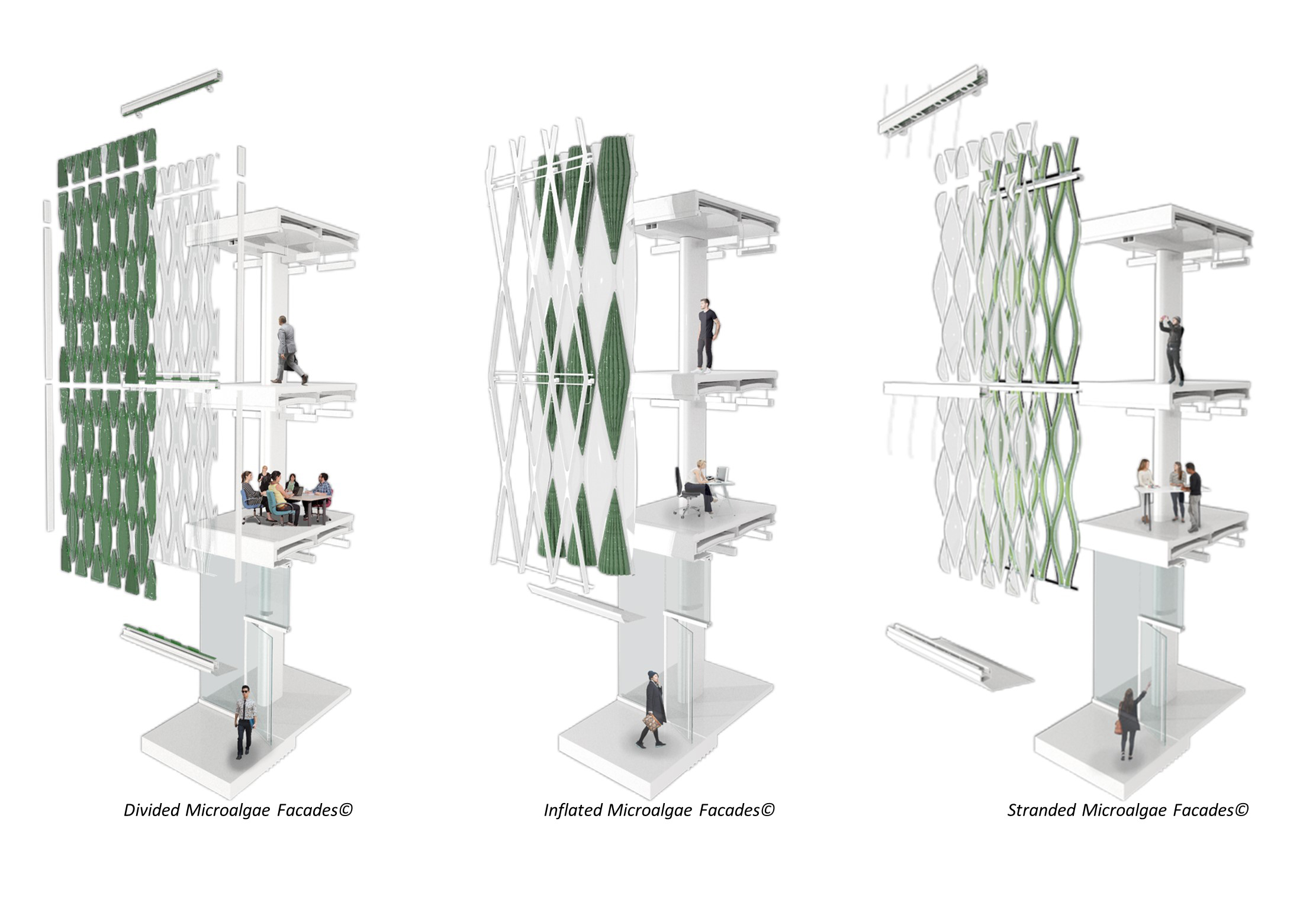 UNC Charlotte's Integrated Design Research Lab imagines an algae-glass curtainwall